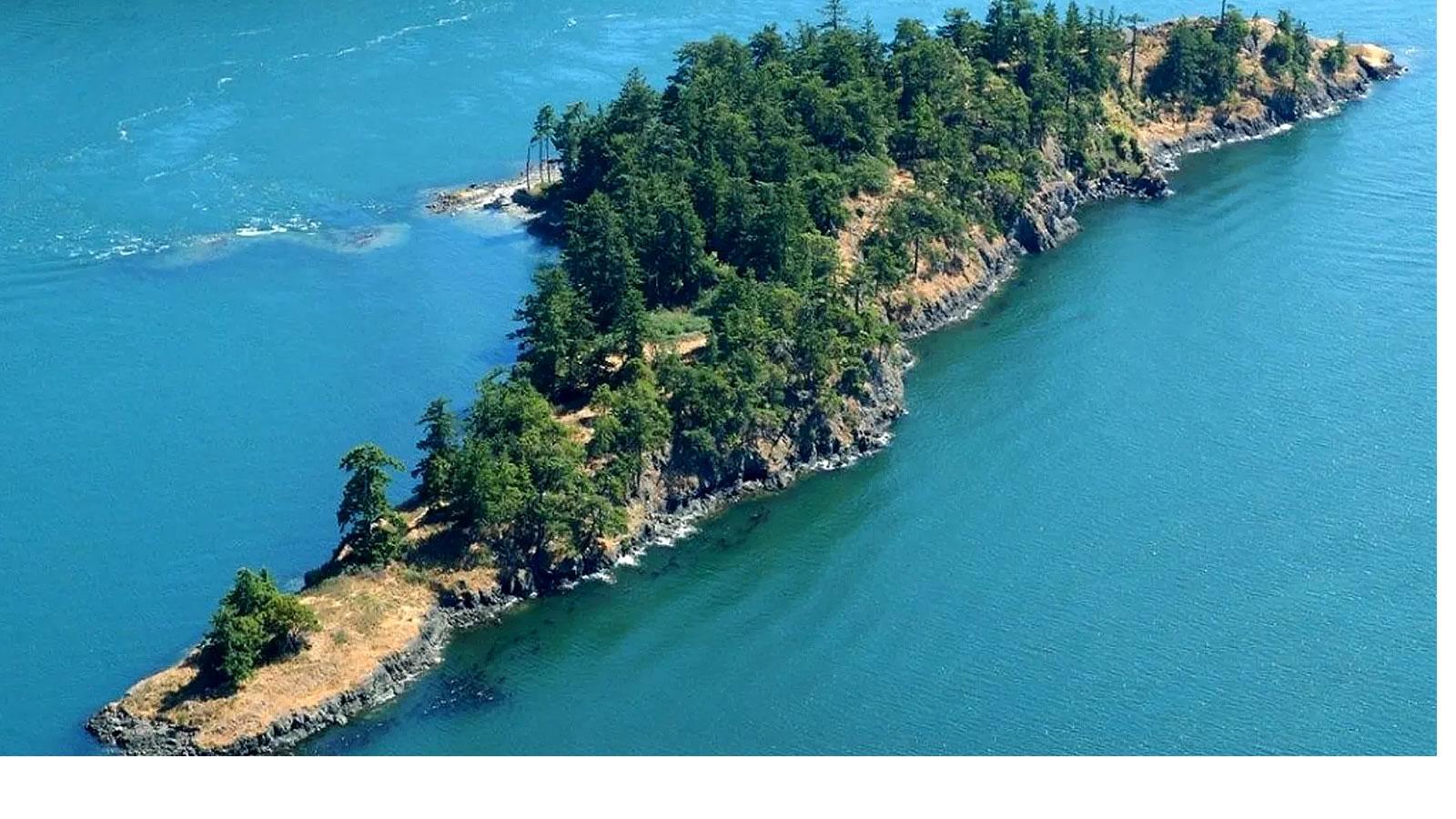 River Island Size Large