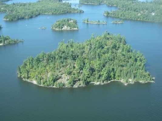 Bustard Island Cottage For Sale
