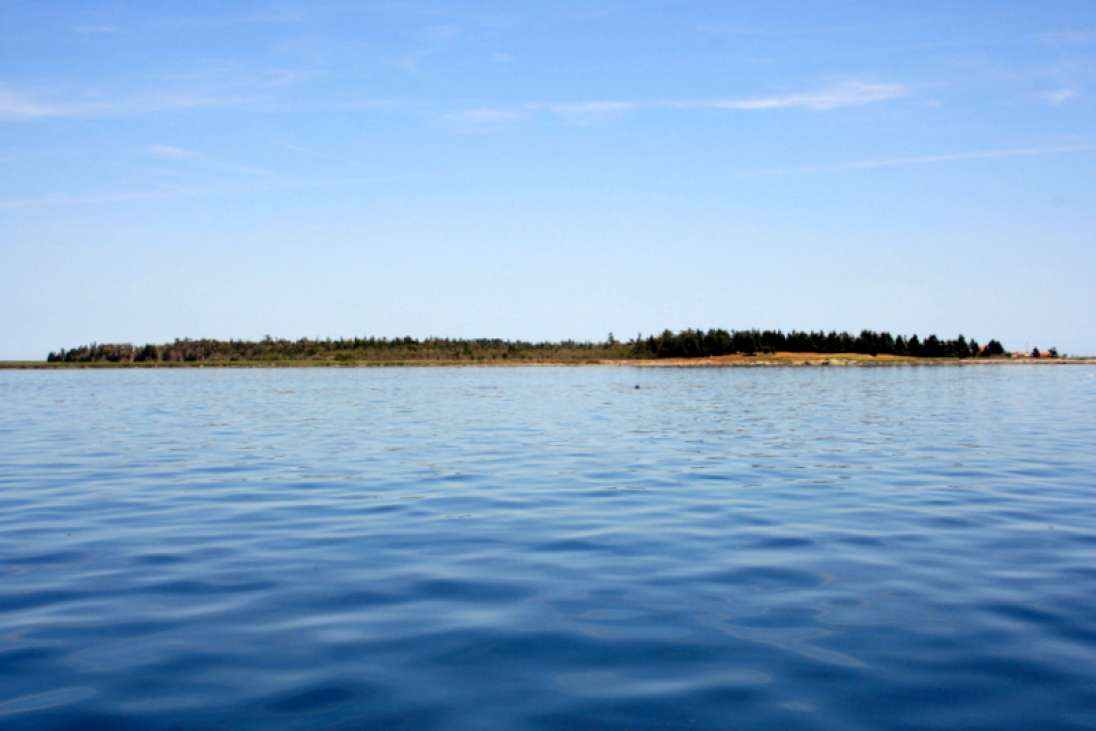 Cheney Island For Sale