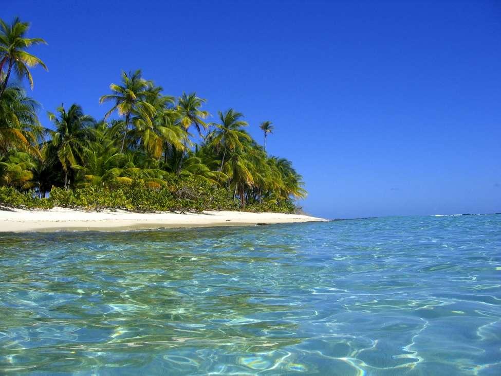 Sandy Island Grenada Caribbean Private Islands For Sale
