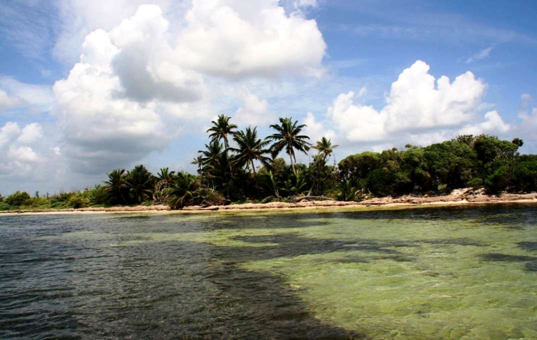 island image