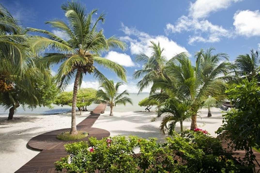 island image