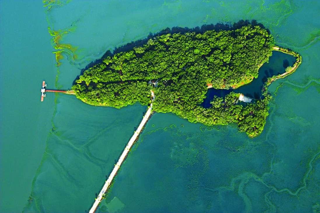 Live Oaks Island South Carolina United States Private